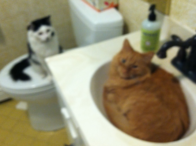 Water faucet stand off - tangled pasta.net