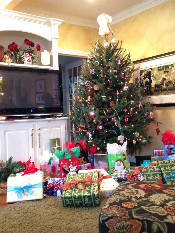 Frank and Kelley's 2013 live Christmas tree = tangledpasta.net