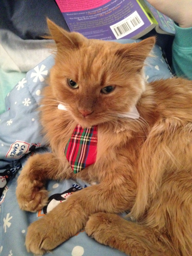 Shelton Rae donned his Scottish Highland plaid tie for New Year's Day breakfast. - tangledpasta.net