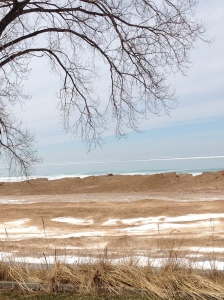 Even the serenity of a Lake Michigan beach inspires my continuing education - tangledpasta.net